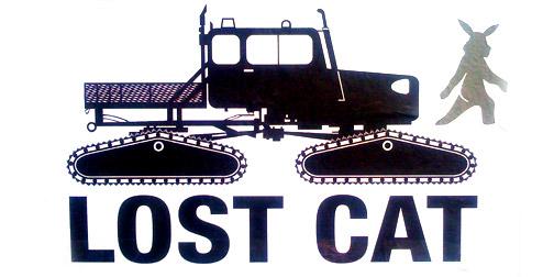 0716-lostcat.jpg