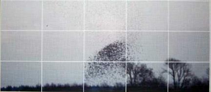 0809-rasterbater.jpg