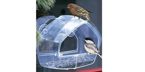 Sept06-birdfeeder.jpg