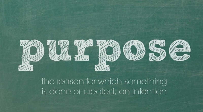 Purpose-Quote-800x533.jpg