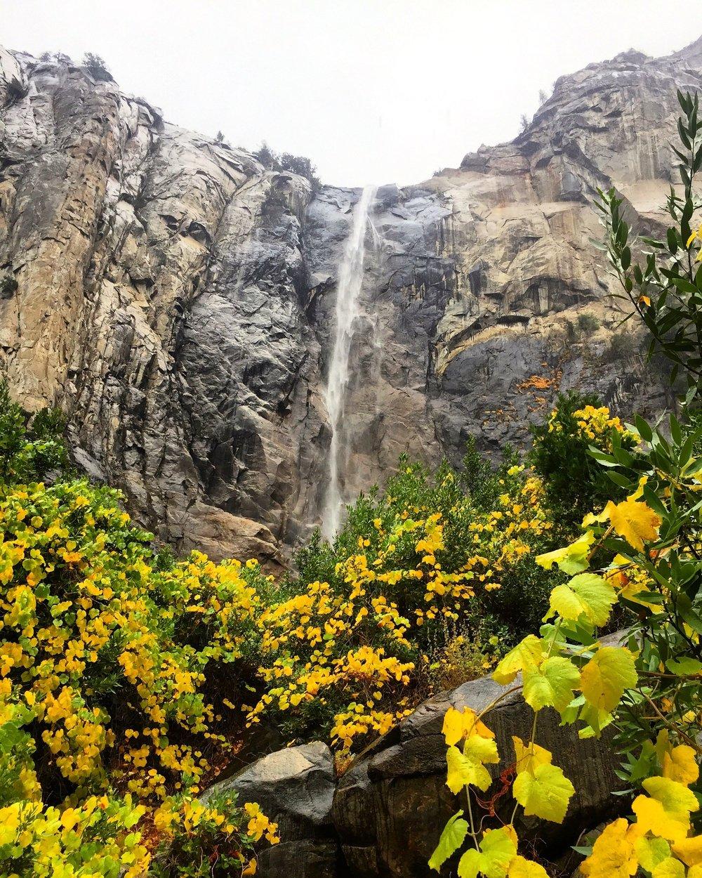 Yosemite_12.jpg