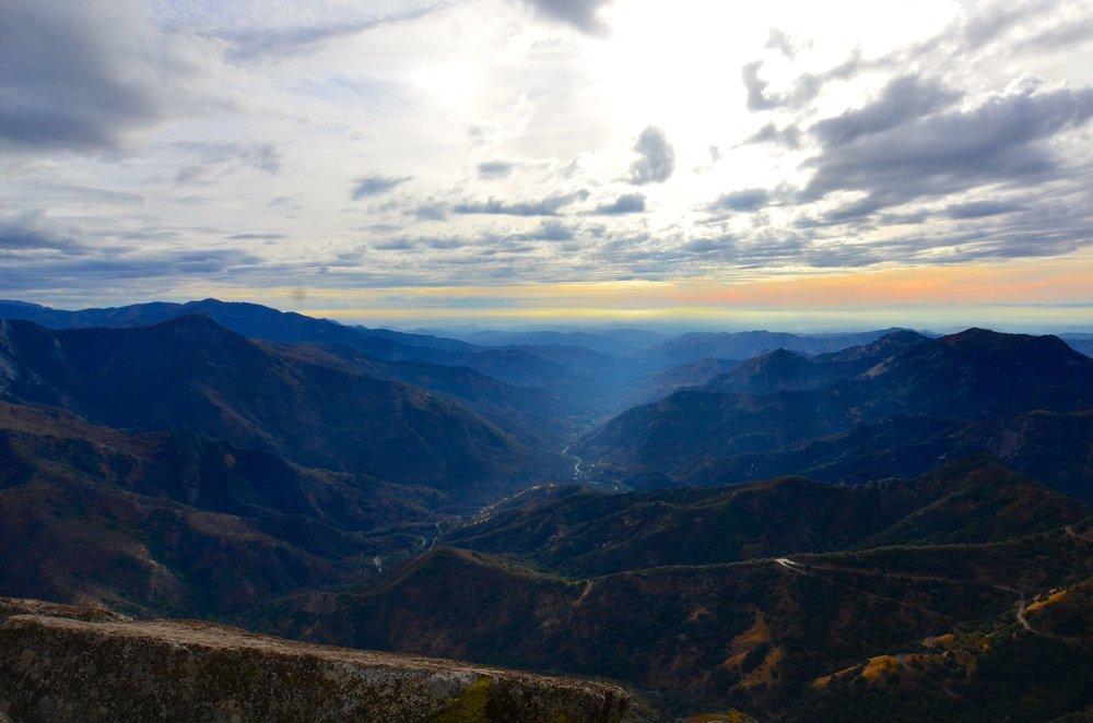 Sequoia_15.jpg