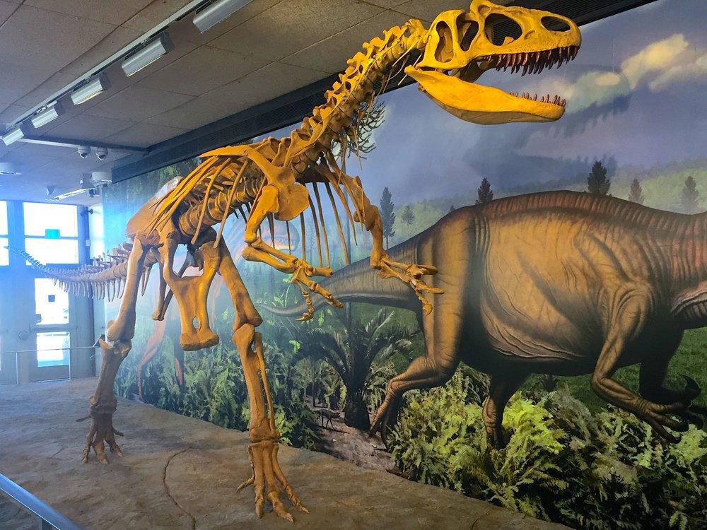 Dinosaurs_01.jpg
