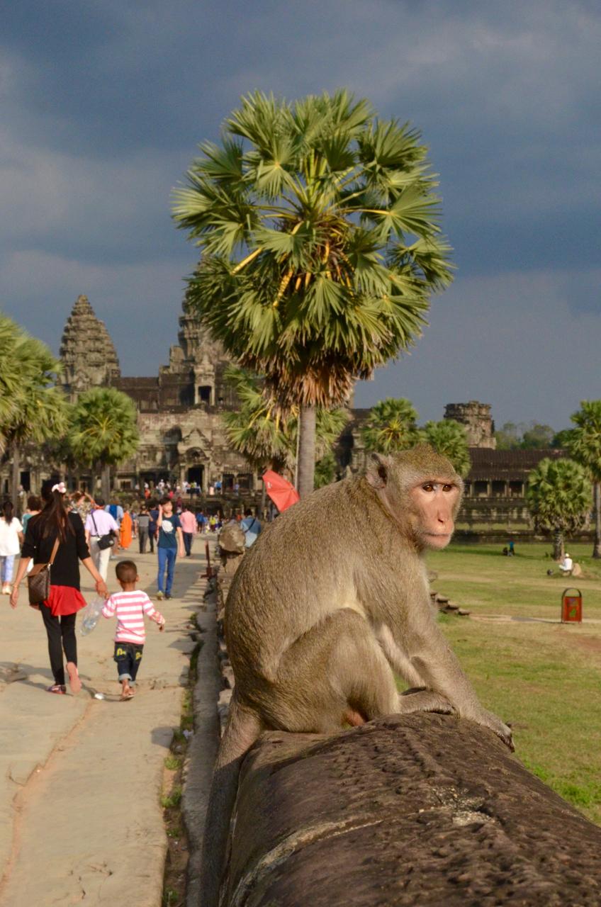 AngkorWat - 130.jpg
