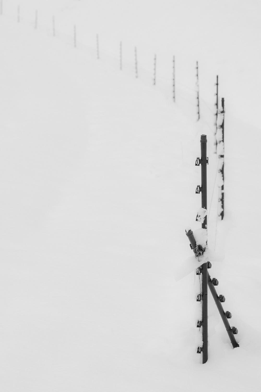 snowfence.jpg
