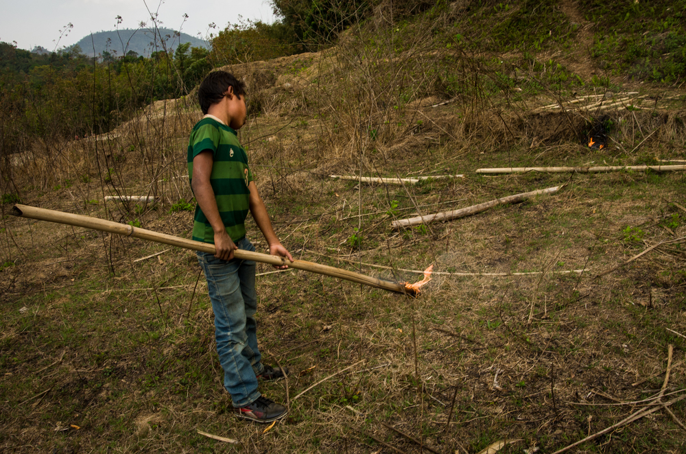 Most members of the Garo communities participate in the forest burnings.  Children oftentimes carry lit bamboo poles to spread the fire.