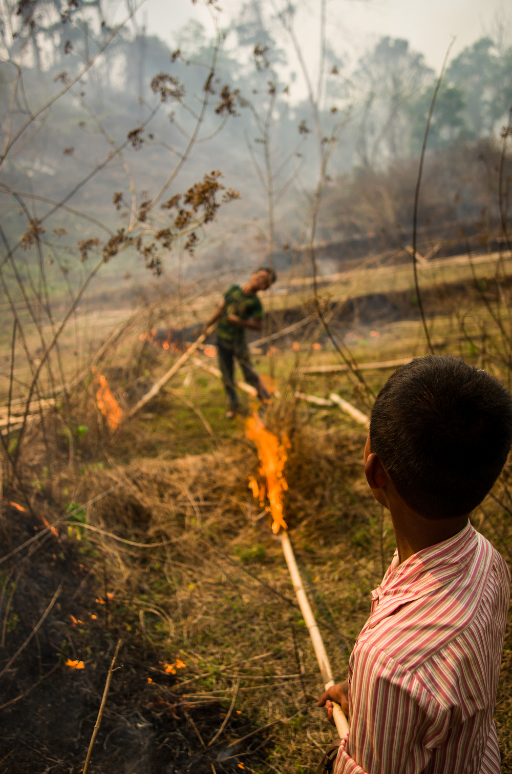 Most members of the Garo communities participate in the forest burnings.  Children oftentimes carry lit bamboo poles to spread the fire