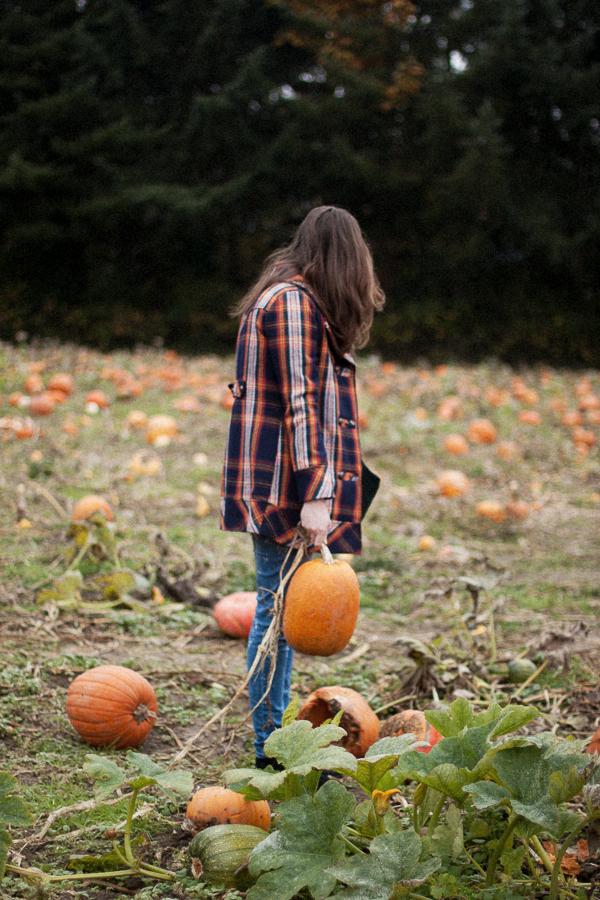 Pumpkin_Patch_Blog_Post-1.jpg