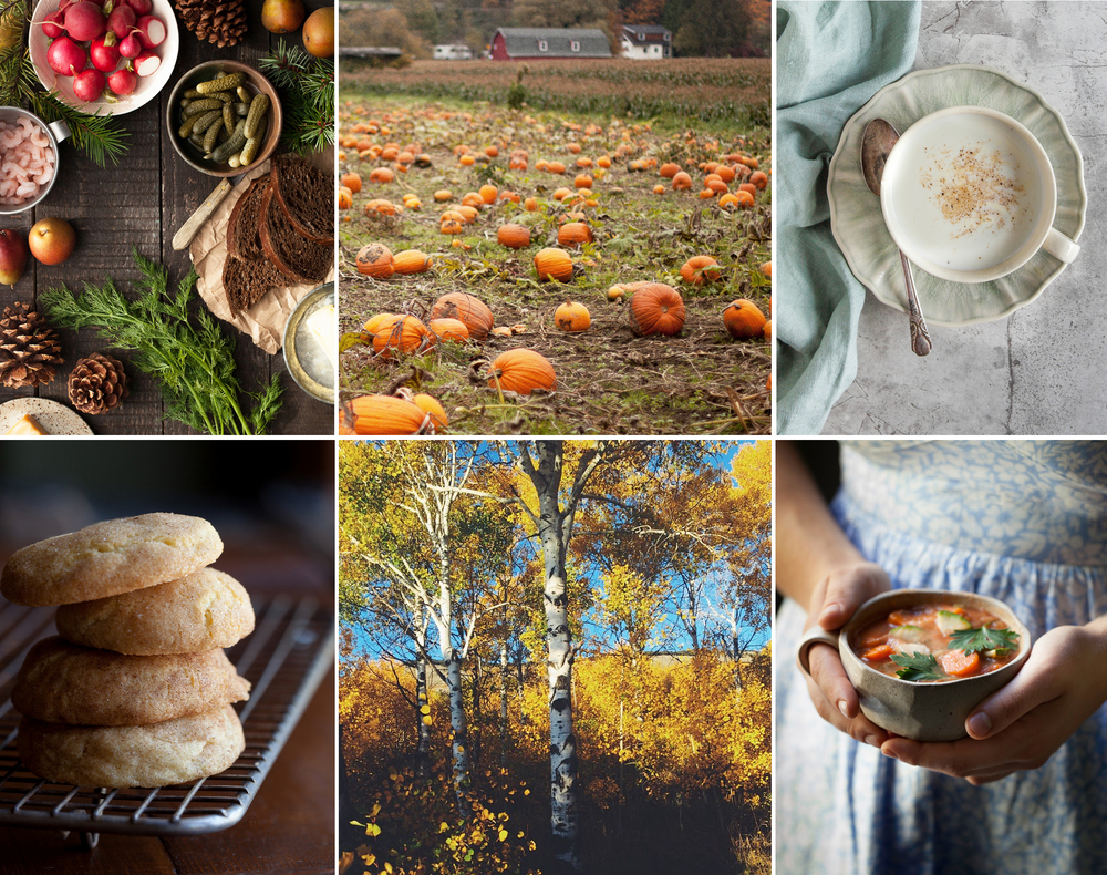 Top left to bottom right: Smorgasbord Scandinavian Lunch, Pumpkin-picking at the patch, a cozy cup of lavender steamer, Snickerdoodles, blooming aspens in City of Rocks, Idaho, a fall favorite, classic vegetable soup.