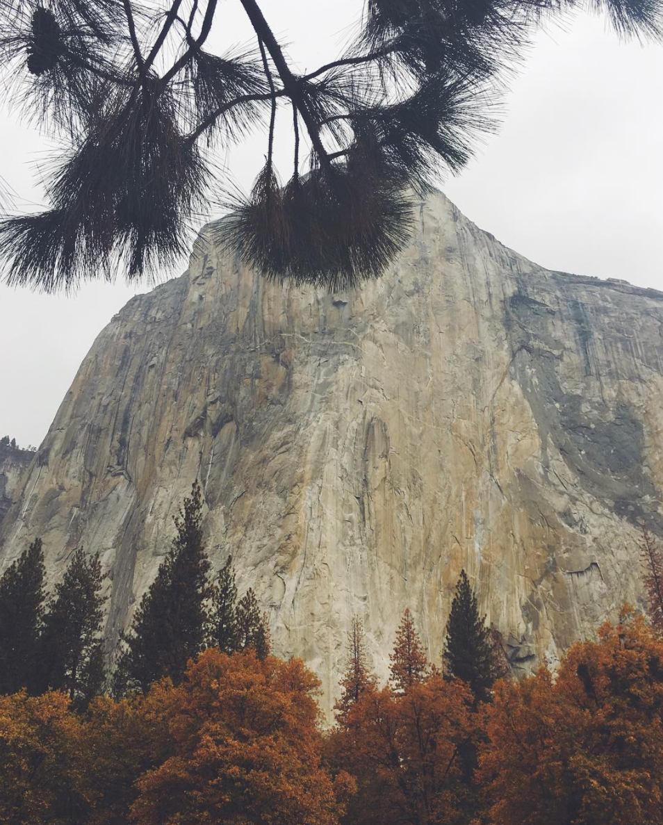 "Looking up at El Cap (El Capitan, re-named in Spanish by the California Militia after the native name ""The Chief""), while laying under a tree on a wet day."