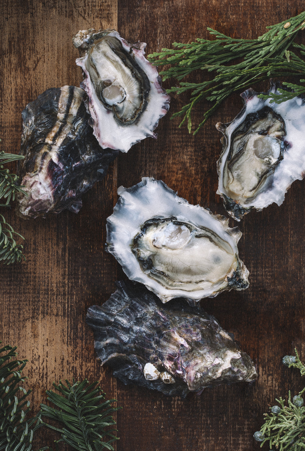 © Shannon Douglas Seattle Food Photographer