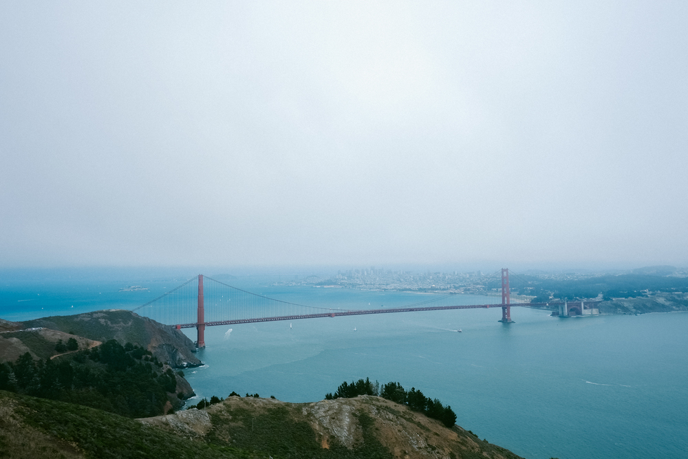 I loved being high enough that you could see the changes in water color as it transitions from the ocean to the bay.