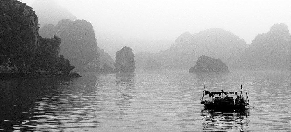 Misty-Morn.jpg
