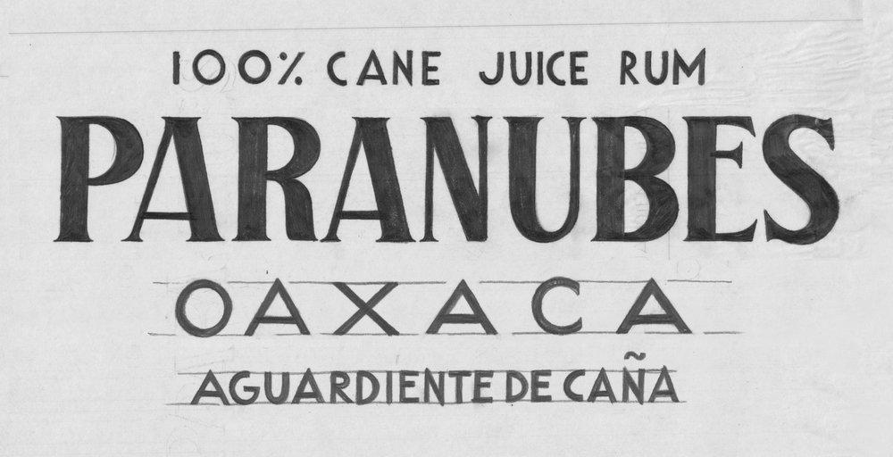 Paranubes-Logo-Sketch1-Web.jpg