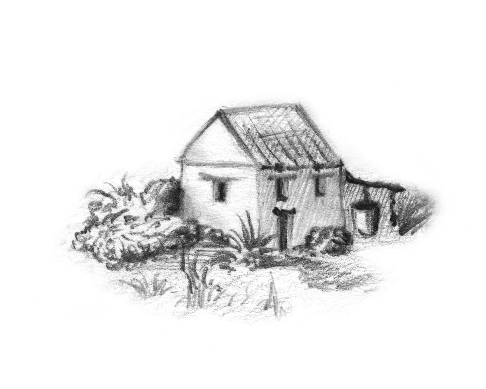 Paranubes-House_Illustration.jpg