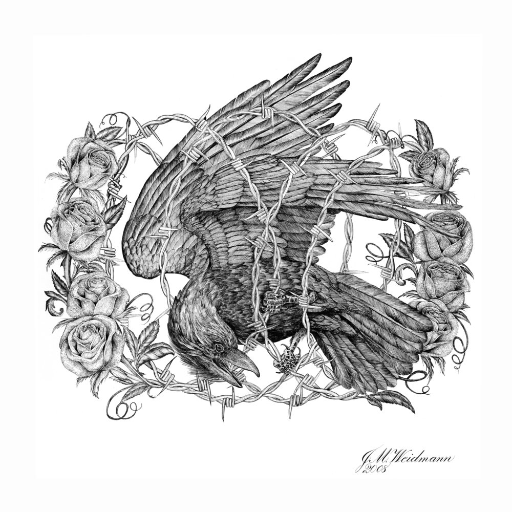 Crow's Nest.jpg