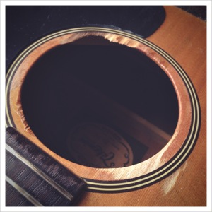 Acoustic guitar top repair