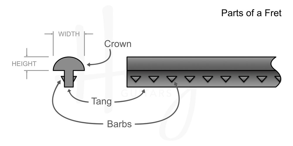 The parts of a guitar fret