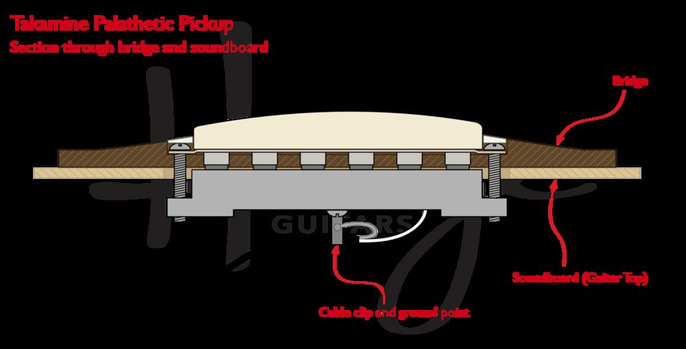 Takamine Palathetic undersaddle pickup - section through bridge and soundboard