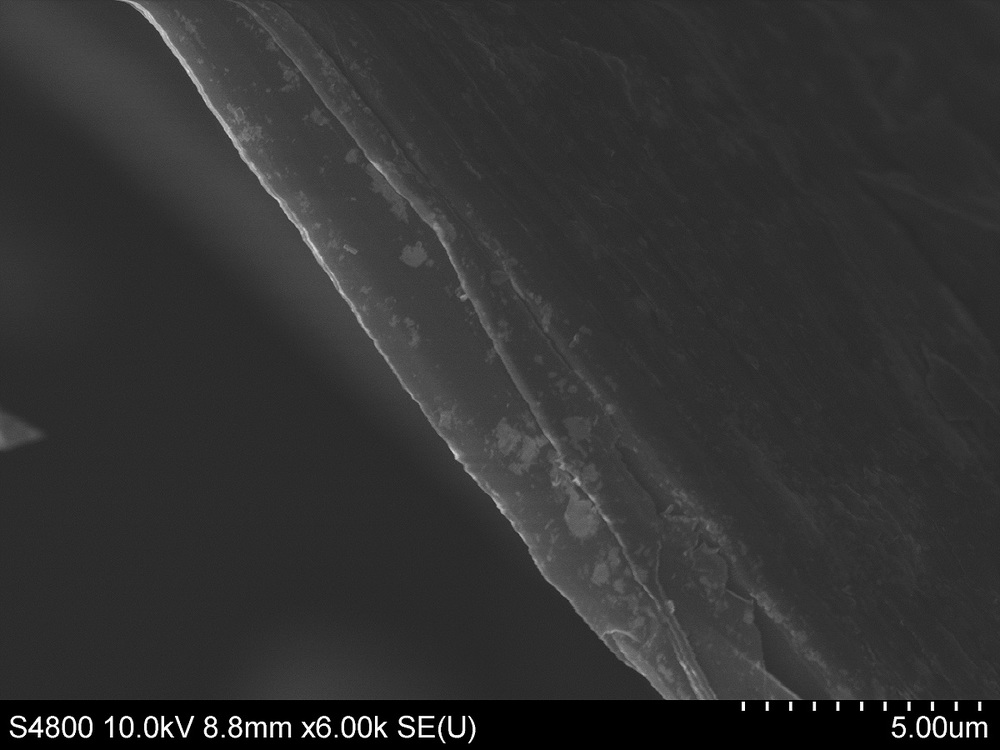 SEM of natural high carbon, crystalline vein graphite