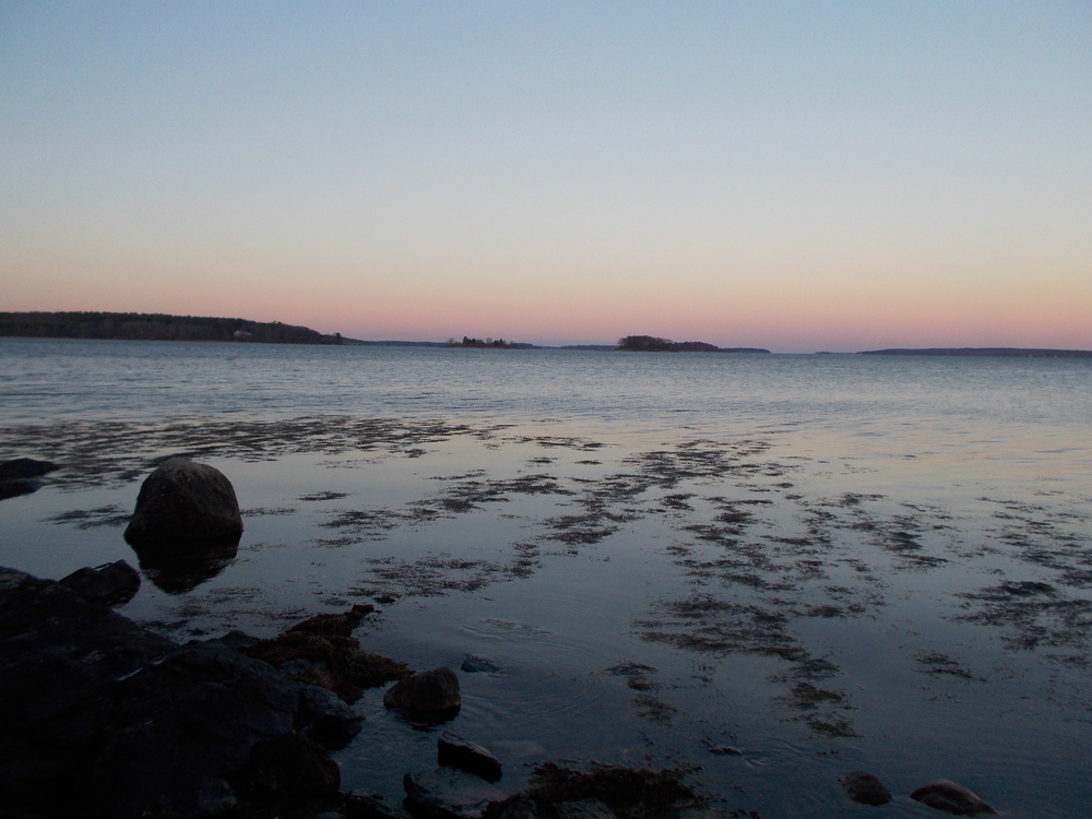 Photos of the Bay.1123 017.JPG