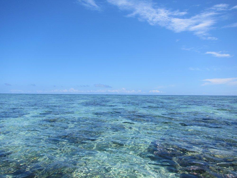 77   The reef at Rakiraki.jpg