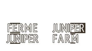 Juniper2.png