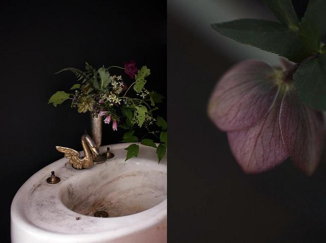 saipua on the sink.jpg