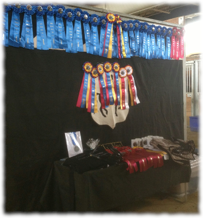 most of the awards won by StarWest at Carousel Connection