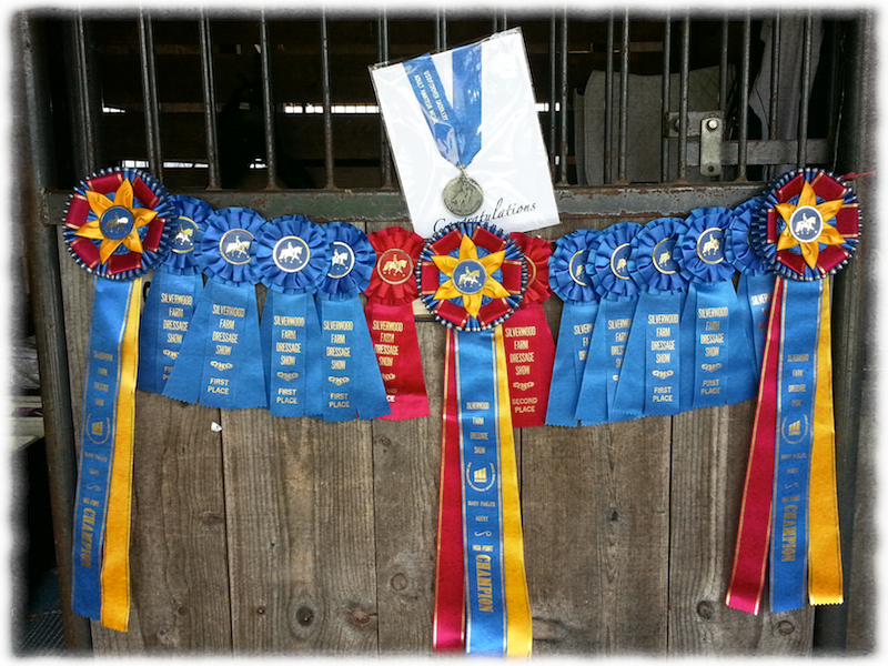 Some of the Ribbons at Silverwood