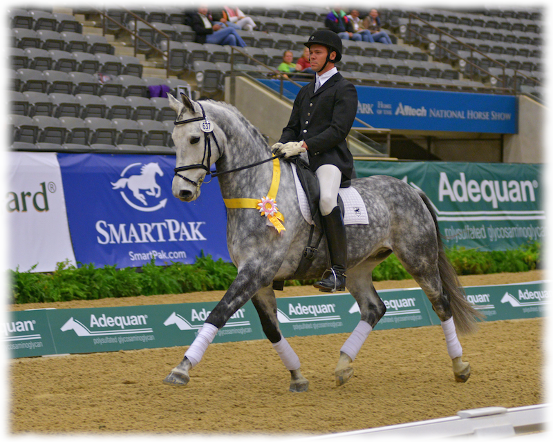 Greystoke was 3rd n the country at Third Level Open at USDF Nationals -  Photo by Bob Tarr