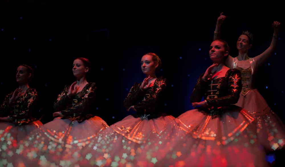 Monica Loughman Ballet.jpg