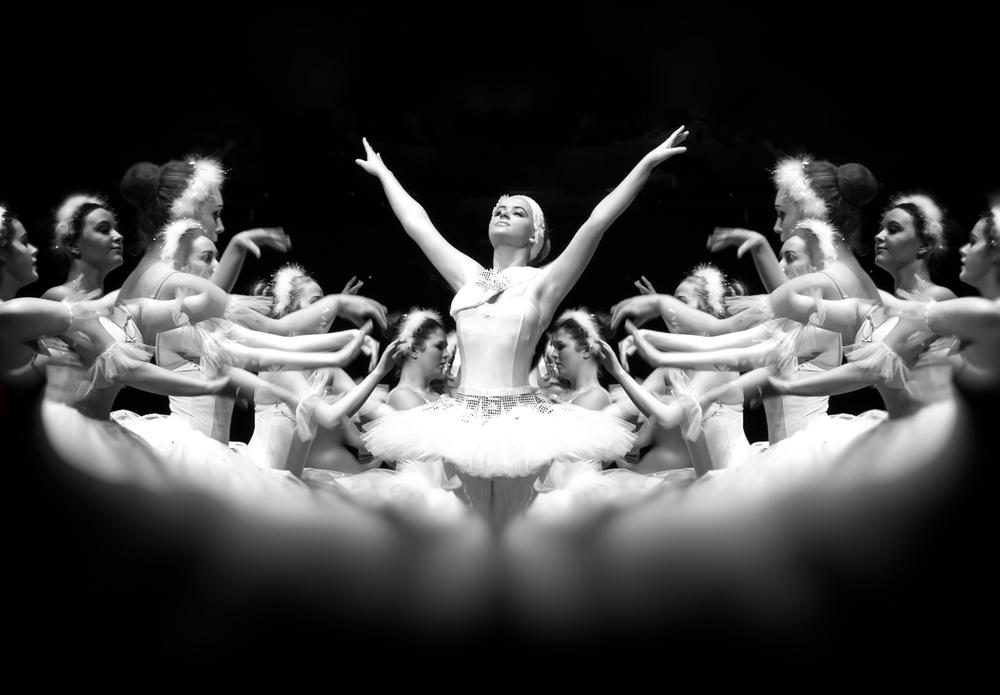 Swan.Large Print.jpg