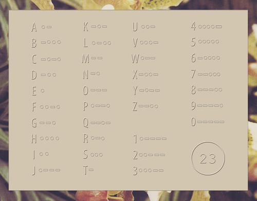 MORSECODE_flowerborder.jpg