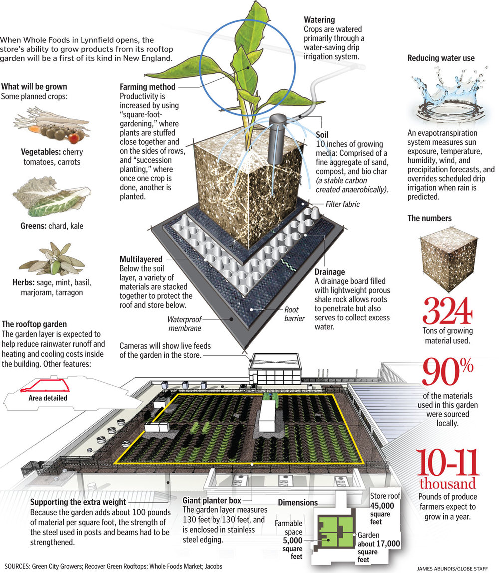 Source: http://www.bostonglobe.com/business/2013/06/02/haute-cuisine-whole-foods-store-sell-produce-grown-its-roof/ixhp7WDaCF4sHseaQ07DHJ/igraphic.html