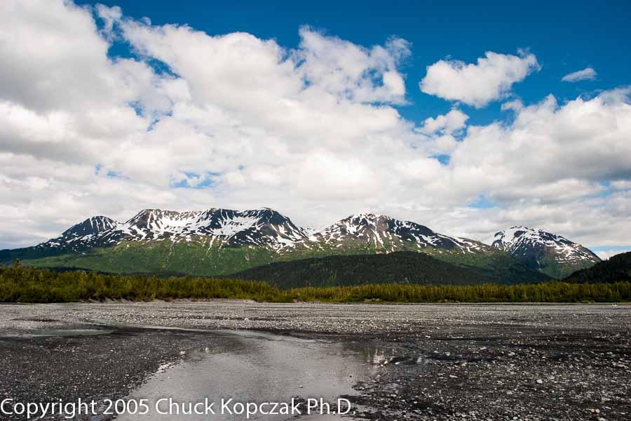Eastward from Exit Glacier, Seward, Alaska