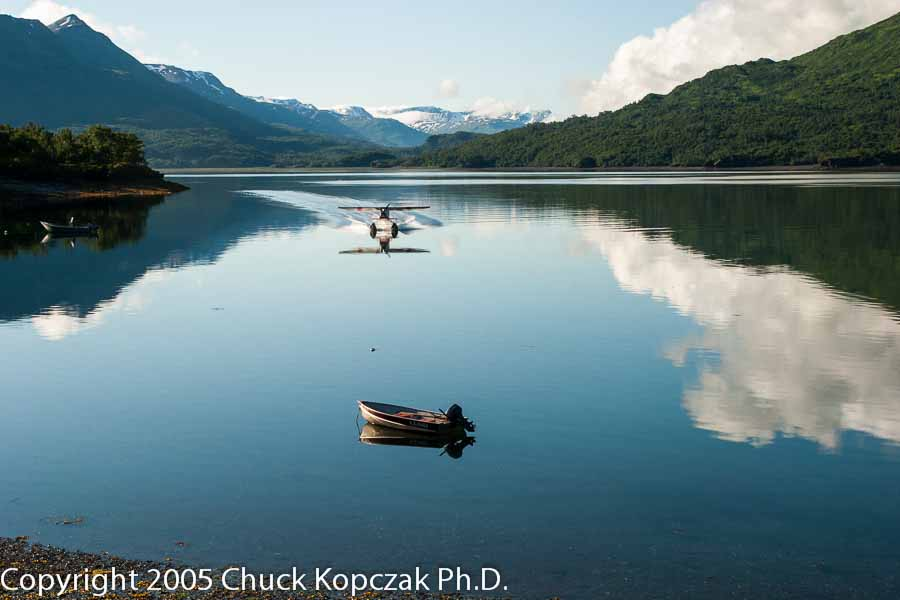 Float plane landing on the mirror-like surface of Zachar Bay on Kodiak Island, Alaska.
