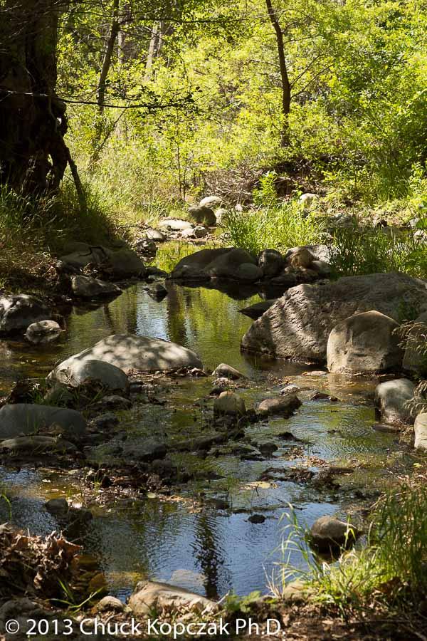 CDKL0977 2013-04-20 Santa Ynez Valley-900px.jpg