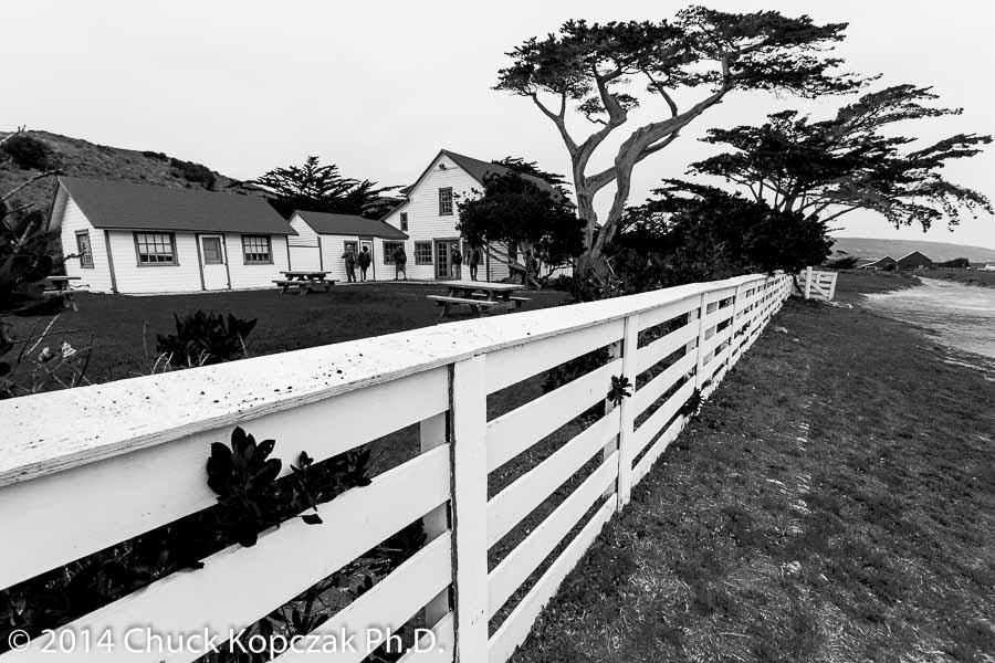 CDKL7599 2014-06-07 Santa Rosa Island-900px.jpg