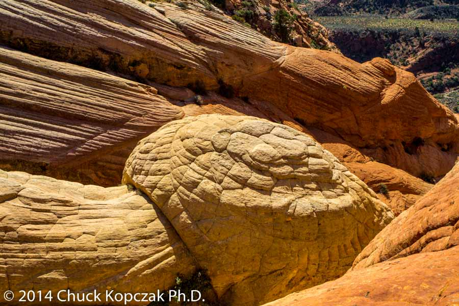 The quilted and layered sandstone of the West Candy Cliffs below Yant Flat in southwestern Utah.