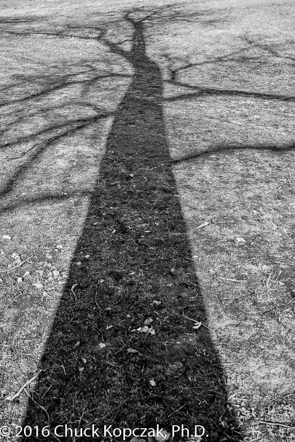 2016-03-24 Missouri River& shadows CDKL7647 900px.jpg