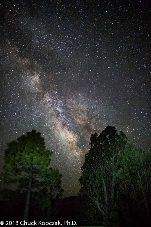 The Milky Way glows through trees above the Amphitheater at Bryce Canyon National Park.