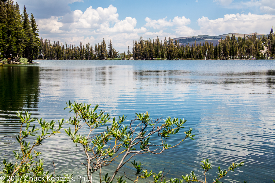 McLeod Lake, Mammoth Lakes