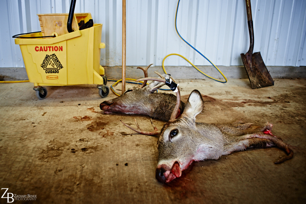 015_2013.12 Texas Christmas_412.jpg