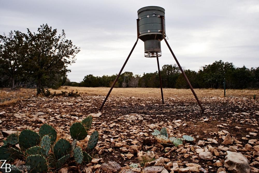 022_2013.12 Texas Christmas_333.jpg