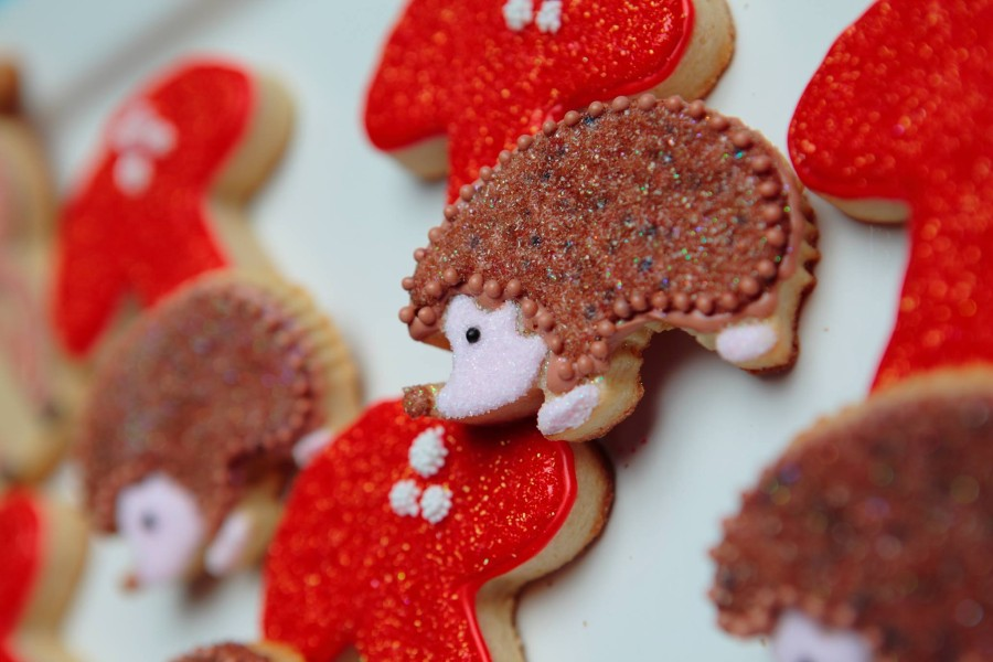 hedgehog-cookies