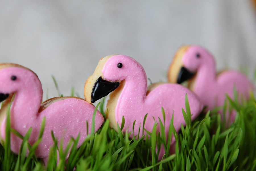 flamingo-cookies.jpg