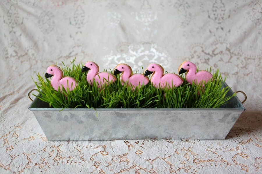 flamingo-sugar-cookies.jpg