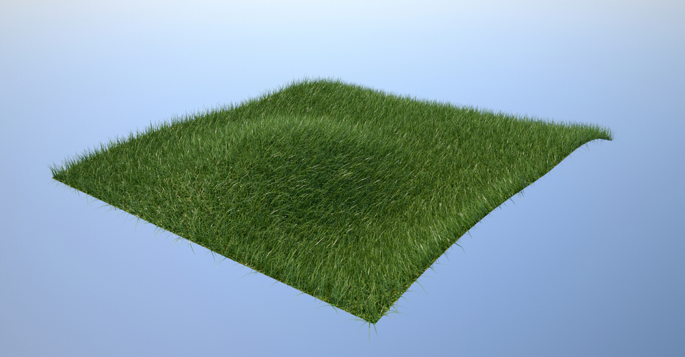 Overgrown Lawn on Nurbs Surface