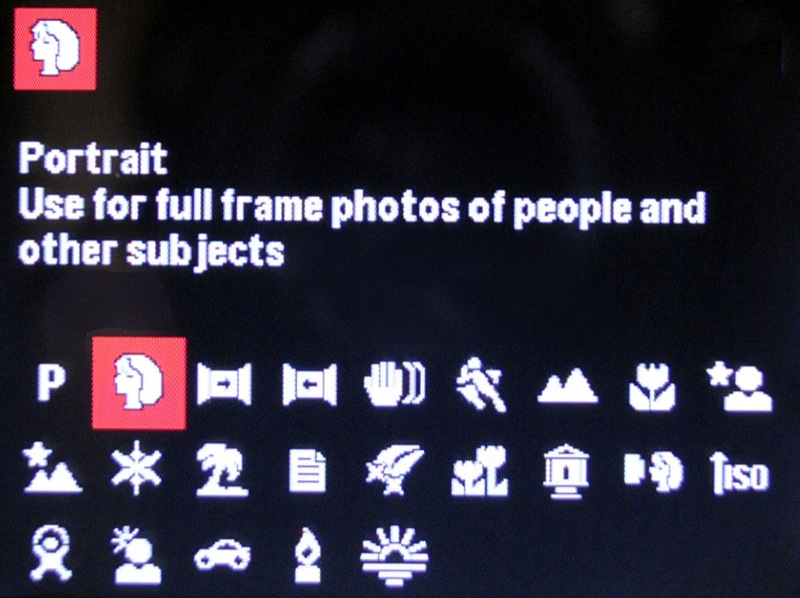 Typical Point-and-shoot preset menu